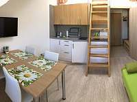 Obývací pokoj s kuchyní - apartmán k pronajmutí Loučná nad Desnou