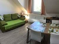 Obývací pokoj s kuchyní - apartmán ubytování Loučná nad Desnou