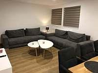 Obývací pokoj spojený s kuchyní - rekreační dům ubytování Zlaté Hory