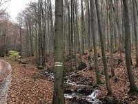RD Zlaté Hory - Lesní bar Lipová lázně -