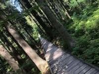 RD Zlaté Hory - Rejvíz mechové jezírko - rekreační dům k pronájmu