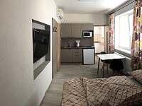 Apartmány U Stadionu - apartmán k pronájmu - 6 Šumperk