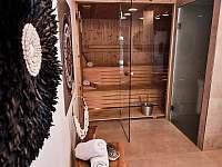 sauna - pronájem chalupy Dolní Bušínov