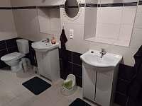 koupelna - chalupa k pronájmu Bartoňov