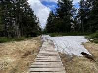 Podmanivá příroda jesenických hor - pronájem chalupy Oskava