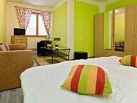 Apartmány Pod Čerťákem - apartmán k pronájmu - 15 Dolní Moravice