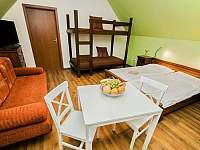 Apartmány Pod Čerťákem - apartmán - 29 Dolní Moravice