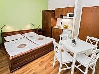 Apartmány Pod Čerťákem - apartmán - 44 Dolní Moravice