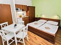 Apartmány Pod Čerťákem - apartmán - 35 Dolní Moravice