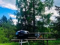 gril - pronájem chaty Dolní Bušínov