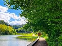 okolí přehrady - Dolní Bušínov