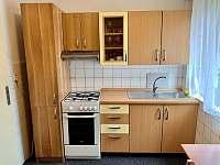 Retro apartmán - apartmán k pronajmutí - 8 Bušín