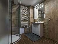 Koupelna obsahuje sprchový kout, umyvadlo se zrcadlem, vyhřívaný žebřík, fén... - Vernířovice