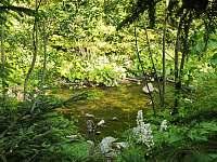 Horský potok u zahrady - pronájem apartmánu Jindřichov
