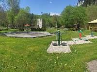 Chata k pronájmu - chata - 17 Dolní Bušínov