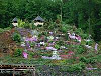 Arboretum Makču Pikču - Veveří