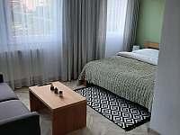 Gray House Apartmán - pronájem apartmánu - 7 Zlaté Hory