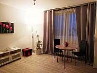 obývací pokoj s kuchyňským koutem - apartmán k pronájmu Loštice
