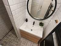 koupelna se sprchovým koutem - pronájem apartmánu Kunčice