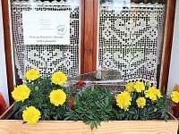 Dolní Moravice ubytování 7 lidí  ubytování