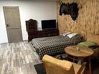 Soukromé ubytování na pile - apartmán k pronajmutí - 8 Javorník - Zálesí