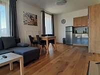 Hlavní obytná místnost - pronájem apartmánu Filipovice