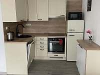 Plně vybavená kuchyň včetně myčky na nádobí,mikrovlné trouby a lednice - apartmán ubytování Karlovice