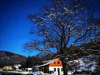 Zima u Cecila - chata k pronájmu Kouty nad Desnou