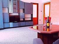 Obývací pokoj - pronájem apartmánu Bohdíkov
