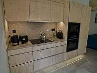 kuchyně s vybavením( lednice, mrazák, mikrovlnná trouba, el.horkovzdušná trouba) - Filipovice