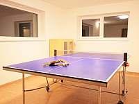 Herna stolní tenis - Velké Losiny