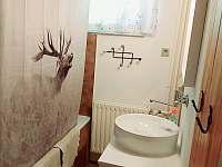 Koupelna - pronájem chaty Lipová-lázně
