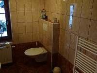 Červená Voda - Šanov - apartmán k pronajmutí - 8