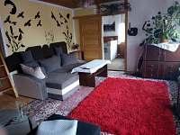 ubytování Sjezdovka Malá Morava - Vysoká Rekreační dům na horách - Staré Město pod Sněžníkem