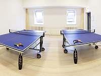 Služby hotelu Kamzík - stolní tenis - Karlov pod Pradědem