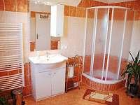 koupelna - apartmán k pronajmutí Stará Červená Voda