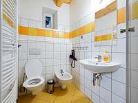 Ap. HOME - koupelna s WC, bidetem a sprchovým koutem - Červená Voda - Šanov