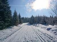 Běžkařská stopa v okolí Čenkovic