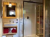 Koupelna s infrasaunou v dolním patře - chalupa k pronájmu Velké Vrbno