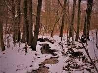 zákruta potoka