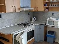 kuchyně 2 - chata k pronajmutí Stará Voda