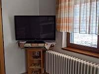 televize v obývacím pokoji - chata k pronajmutí Stará Voda