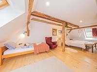 ložnice s roztahovací postelí po roztažení jsou v pokoji 4 plnohodnotná lůžka - Široká Niva - Skrbovice