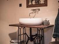 koupelna v přízemí - chalupa k pronajmutí Starý Maletín