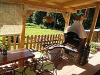 Gril na kryté terase - Horní Orlice