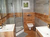 Koupelna - chata k pronájmu Horní Orlice