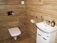 Samostatné WC s bidetovou sprchou - pronájem chaty Horní Orlice
