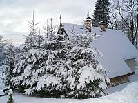Horní Orlice Vánoce 2019 pronájem