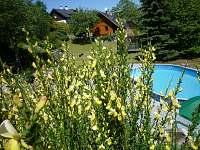 Zlaté Hory - Dolní Údolí - chalupa k pronajmutí - 7