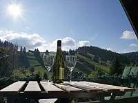 Výhled - balkón 2.NP - chata ubytování Ostružná